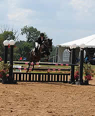 Jeri on horse jumping hurdle